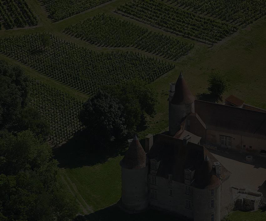 Vins de Saint-Pourçain | Cépages